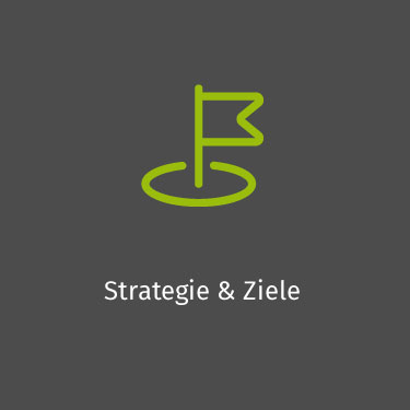 Strategie & Ziele